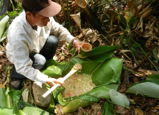 Preparing noodle soup in the jungle